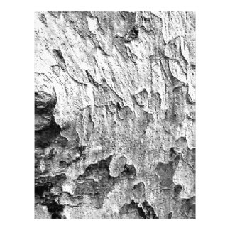 Beautiful Tree Bark Photography Letterhead Template