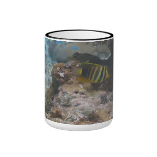 Beautiful Tropical Butterfly Fish Coffee Mug