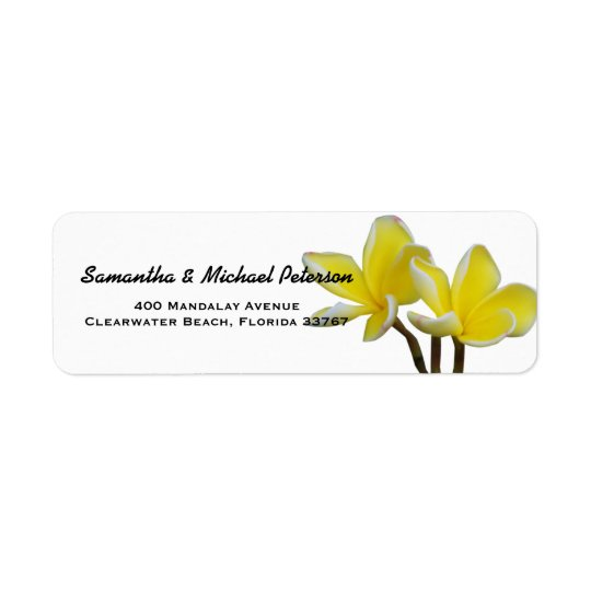 Beautiful Tropical Plumeria Flowers