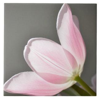 Beautiful Tulip Tile