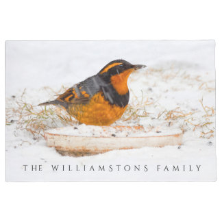 Beautiful Varied Thrush on a Snowy Winter's Day Doormat