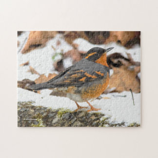 Beautiful Varied Thrush on the Snowy Ground Jigsaw Puzzle