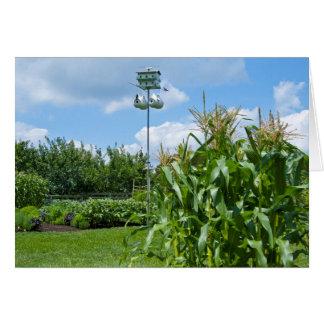 Beautiful Vegetable Garden Photo Card