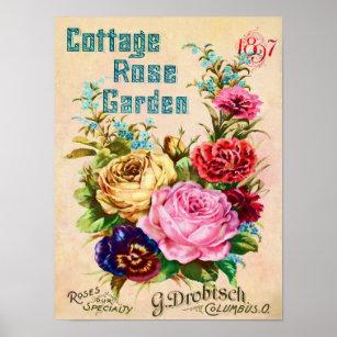 Vintage Flower Catalog Advertisements Posters Prints Poster