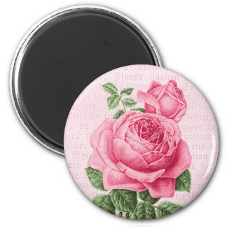 Beautiful vintage pink rose magnet