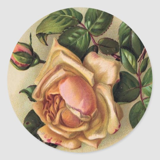 *Beautiful Vintage Roses* Classic Round Sticker