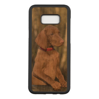 Beautiful Vizsla Sporting Dog Carved Samsung Galaxy S8+ Case