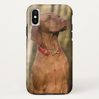 Beautiful Vizsla Sporting Dog Case-Mate iPhone Case