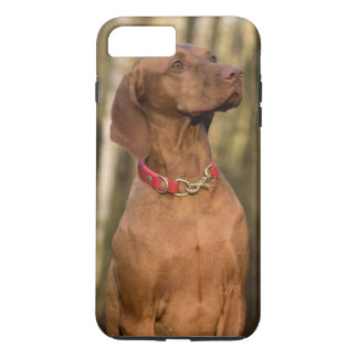 Beautiful Vizsla Sporting Dog iPhone 8 Plus/7 Plus Case