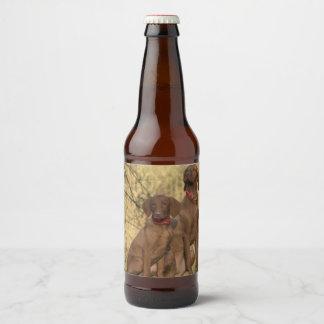 Beautiful Vizsla Sporting Dogs Beer Bottle Label