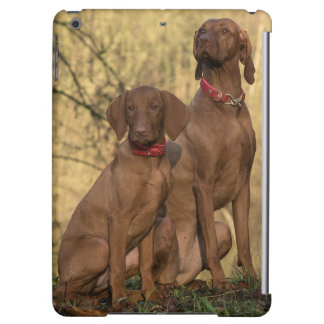Beautiful Vizsla Sporting Dogs Cover For iPad Air