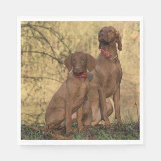 Beautiful Vizsla Sporting Dogs Disposable Napkins