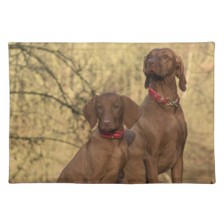 Beautiful Vizsla Sporting Dogs Placemat