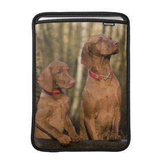 Beautiful Vizsla Sporting Dogs Sleeve For MacBook Air