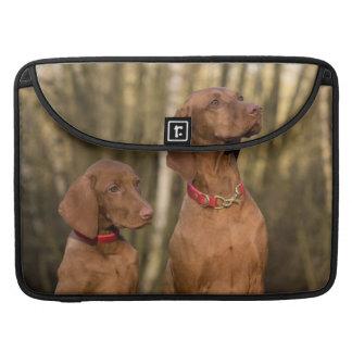 Beautiful Vizsla Sporting Dogs Sleeve For MacBook Pro