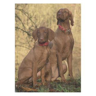 Beautiful Vizsla Sporting Dogs Tablecloth