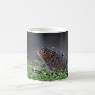 Beautiful Water vole Mug