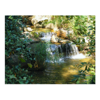 Beautiful  Waterfall Postcard