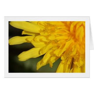 Beautiful Weed : Dandelion Card