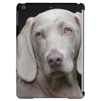 Beautiful Weimaraner Hunting Dog Cover For iPad Air