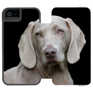 Beautiful Weimaraner Hunting Dog Incipio Watson™ iPhone 5 Wallet Case