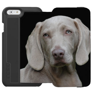 Beautiful Weimaraner Hunting Dog Incipio Watson™ iPhone 6 Wallet Case
