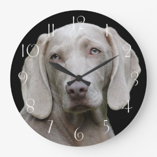 Beautiful Weimaraner Hunting Dog Large Clock
