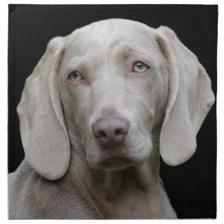 Beautiful Weimaraner Hunting Dog Napkin