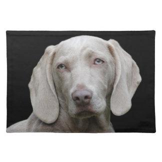 Beautiful Weimaraner Hunting Dog Placemat