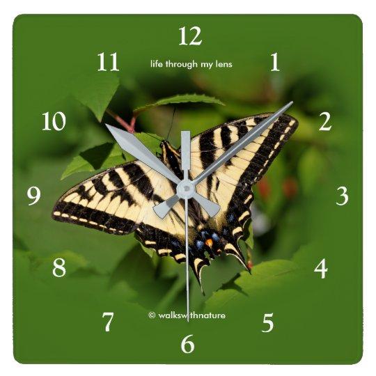 Beautiful Western Tiger Swallowtail Butterfly Clocks