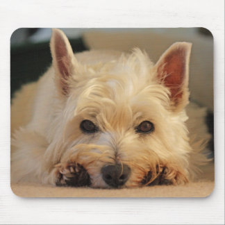 Beautiful Westie Dog Mouse Pad / Mouse Mat
