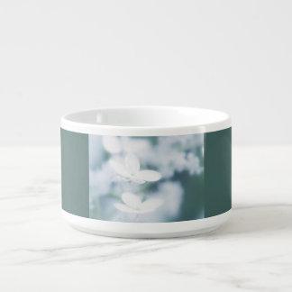 Beautiful white blossoms bowl