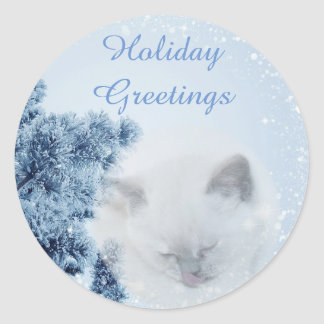 Beautiful White Cat snowy winter Holiday Greetings Classic Round Sticker
