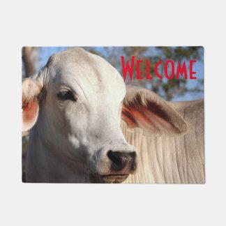 Beautiful White Cow Heifer Cattle Photograph Farm Doormat