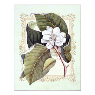 Beautiful White Magnolia Formal Dinner Party Card