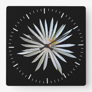 Beautiful white night blooming flower on black square wall clock