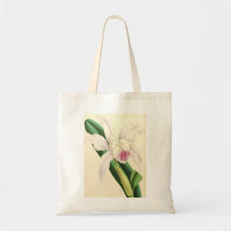 Beautiful White Orchid Tote Bag