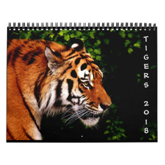 Beautiful Wild Tigers 12-Month 2018 Wall Calendar