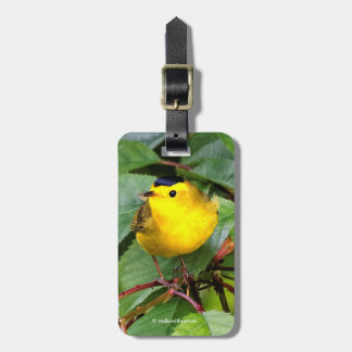 Beautiful Wilson's Warbler in the Cherry Tree Luggage Tag