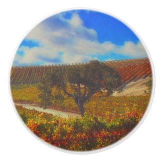 Beautiful Wine Contry Vineyard Knobs