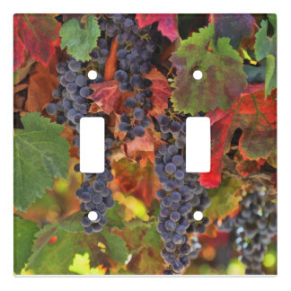 Beautiful Wine Country Light Switch Covers