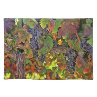 Beautiful Wine Country Place mat Table Settings