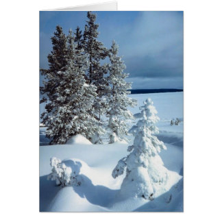 Beautiful Winter Blank Business Holiday Christmas Card