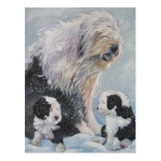 Beautiful winter Old English SheepDog Painting Postcard