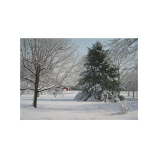 Beautiful Winter Scene Canvas Print