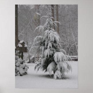 Beautiful Winter Scene Poster