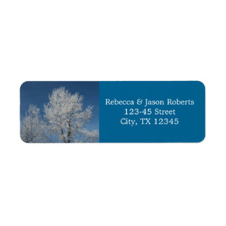 Beautiful  winter snow covered  trees scene return address label