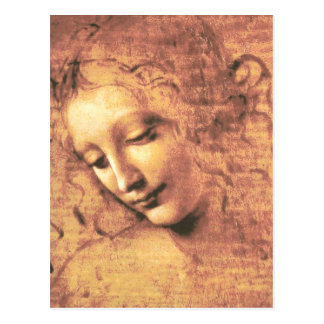 Beautiful Woman by Leonardo da Vinci Postcard