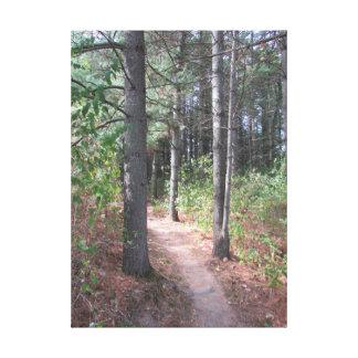 Beautiful Wooded Trail Photograph Wall Art