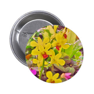Beautiful Yellow autumn orchids Buttons